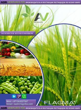 Fabricante e fornecedor de pesticidas em todo o mundo