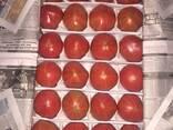 Овощи и Фрукты. Сухо-фрукты - фото 3