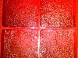 Oferecemos moldes termo-poliuretanos (TPU) não apenas para p
